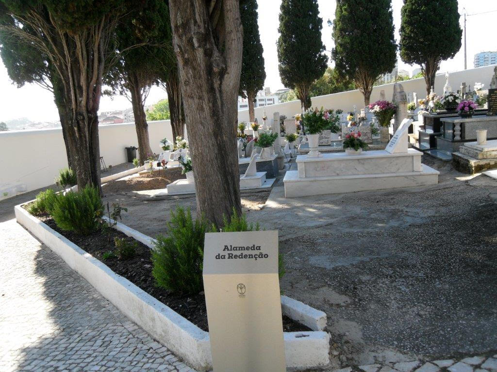 Cemitério Loures - Paula Ferreira